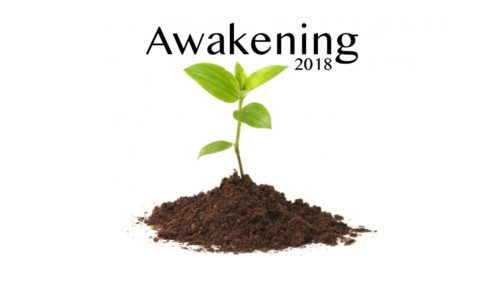 Awakening Conference 2018 | Main Session 3 (Maury Brenneman)